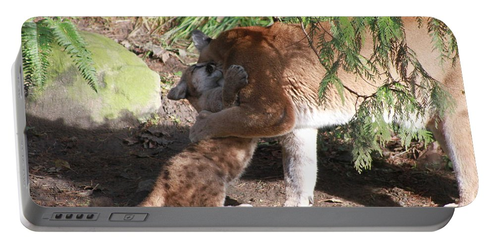 Palus Portable Battery Charger featuring the photograph Playful Hugs by Laddie Halupa