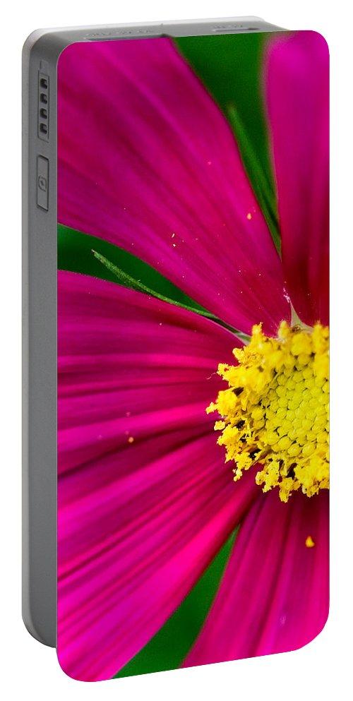 Plink Portable Battery Charger featuring the photograph Plink Flower Closeup by Michael Bessler