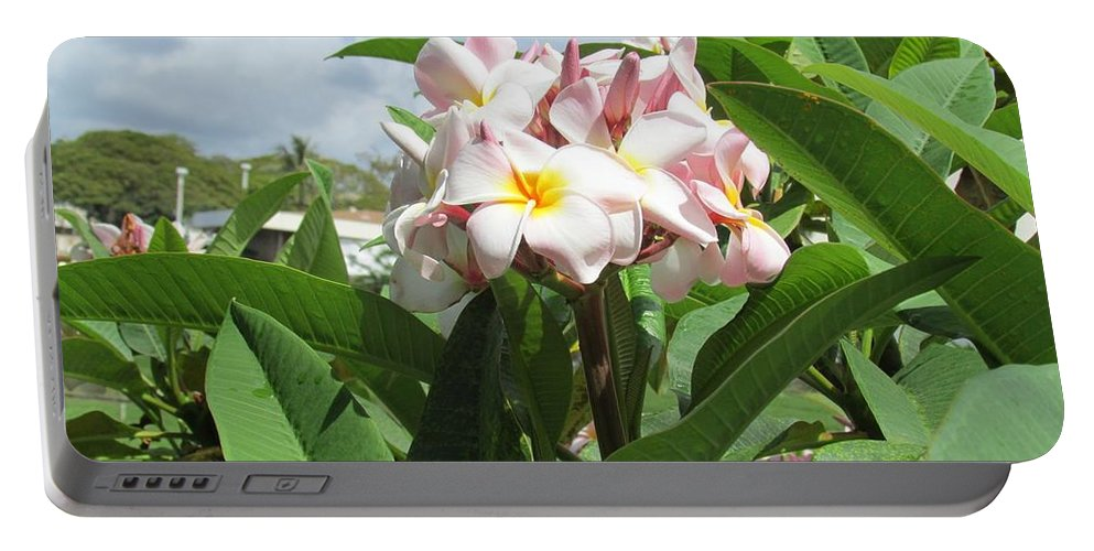 Plumeria Flowers Portable Battery Charger featuring the photograph Plumeria In Pink by Huery Talbert