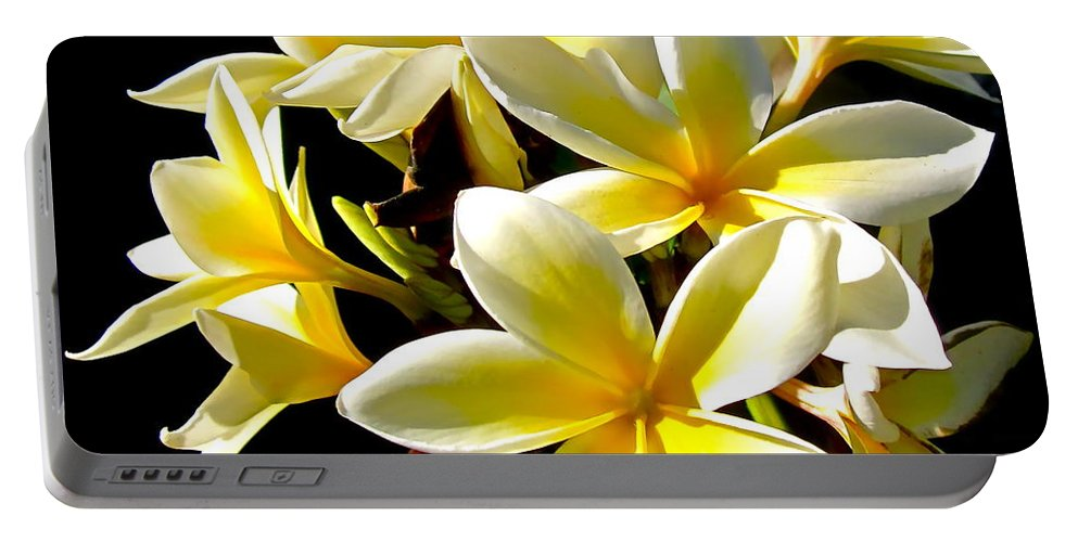 Photograph Of Plumeria Portable Battery Charger featuring the photograph Plumeria Proper by Gwyn Newcombe