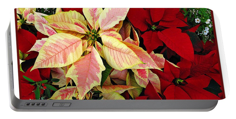 Poinsetta Portable Battery Charger featuring the photograph Poinsetta Greetings by Joan Minchak