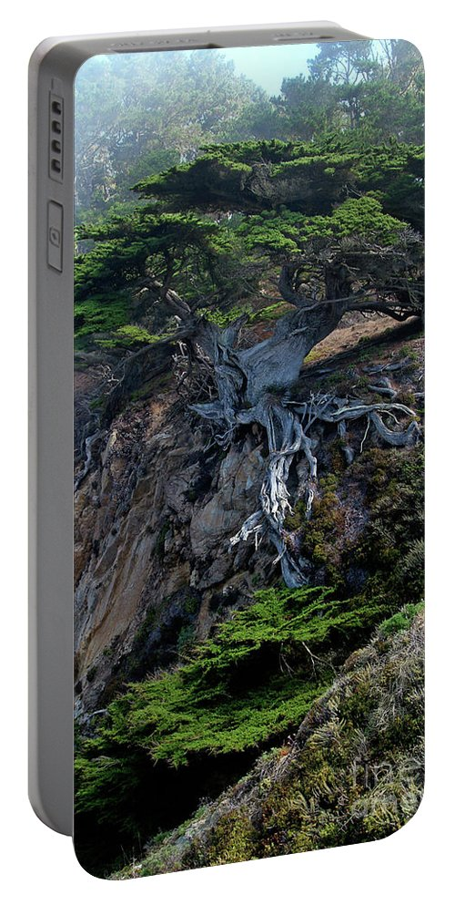 Landscape Portable Battery Charger featuring the photograph Point Lobos Veteran Cypress Tree by Charlene Mitchell