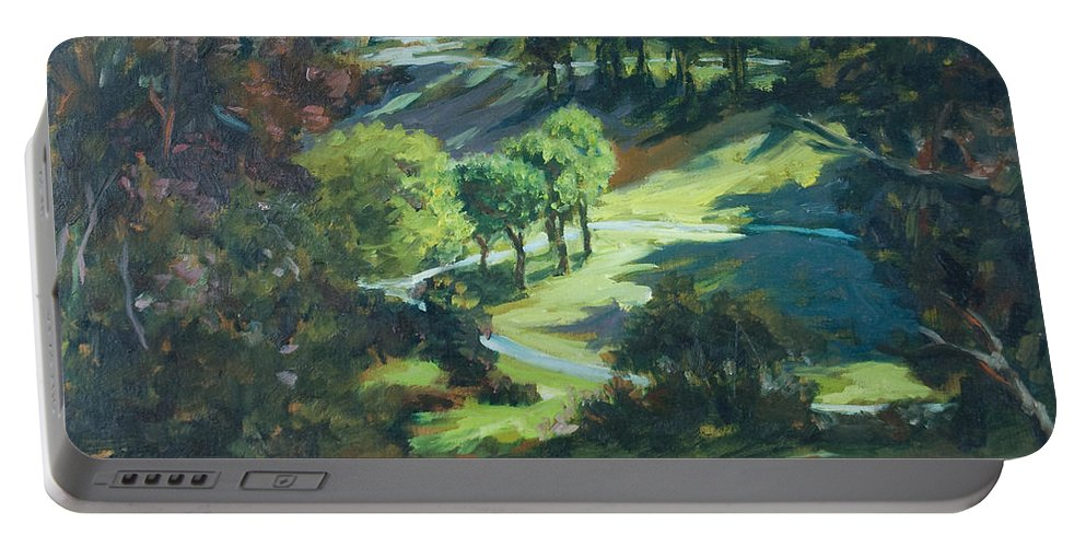 Park Portable Battery Charger featuring the painting Polin Springs by Rick Nederlof