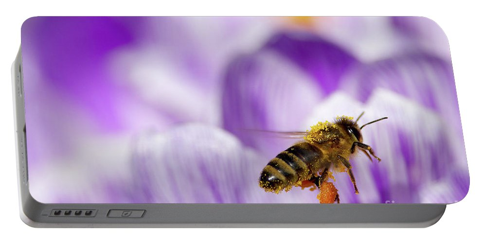Honeybee Portable Battery Charger featuring the photograph Pollen Collector by Sharon Talson