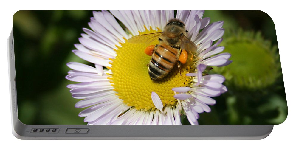 Pollen Harvest Portable Battery Charger featuring the photograph Pollen Harvest by Ellen Henneke