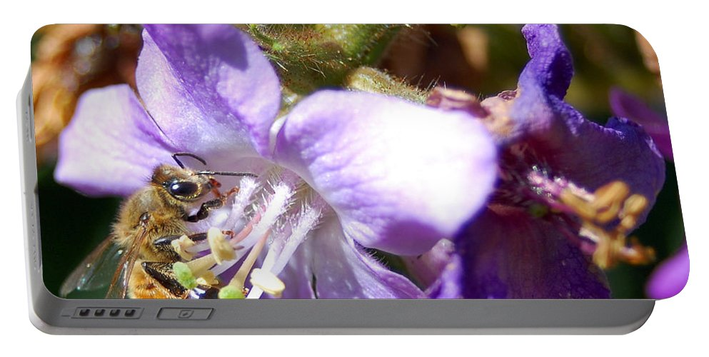 Bee Portable Battery Charger featuring the photograph Pollinating 1 by Amy Fose