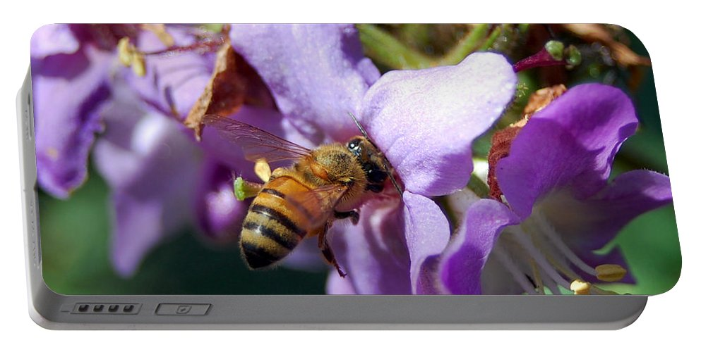 Flower Portable Battery Charger featuring the photograph Pollinating 2 by Amy Fose