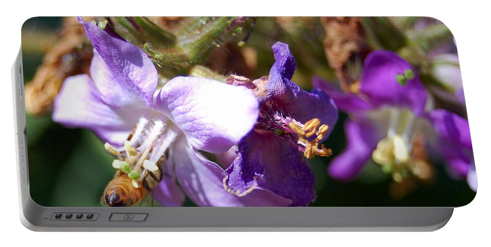 Bee Portable Battery Charger featuring the photograph Pollinating 3 by Amy Fose