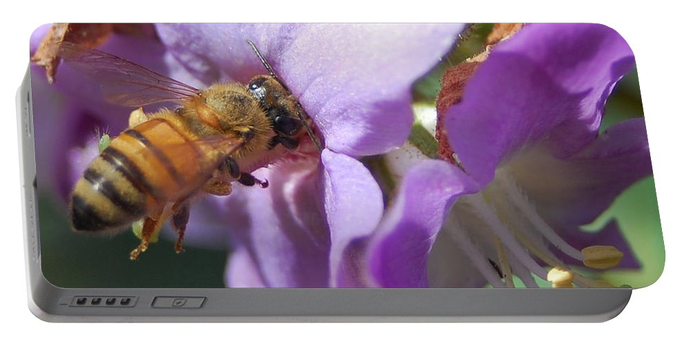 Bee Portable Battery Charger featuring the photograph Pollinating 5 by Amy Fose