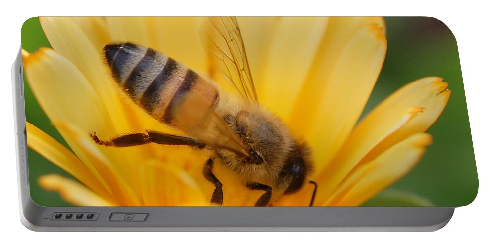 Bee Portable Battery Charger featuring the photograph Pollination 2 by Amy Fose