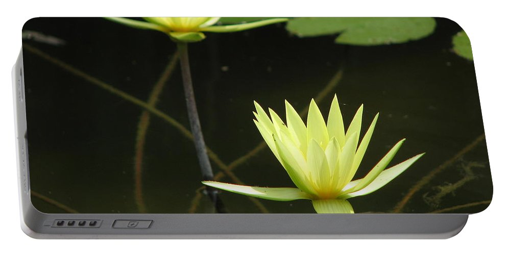 Pond Portable Battery Charger featuring the photograph Pond by Amanda Barcon