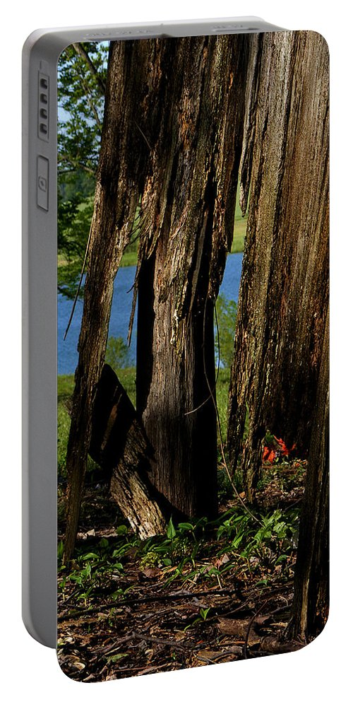 Landscape Portable Battery Charger featuring the photograph Pond Fragments by Rachel Christine Nowicki