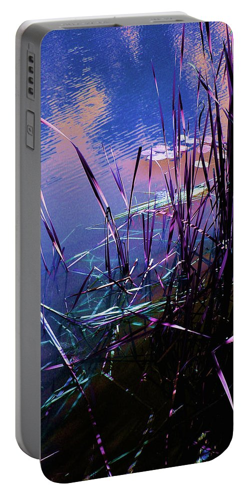 Reeds In Pond At Sunset Portable Battery Charger featuring the photograph Pond Reeds At Sunset by Joanne Smoley