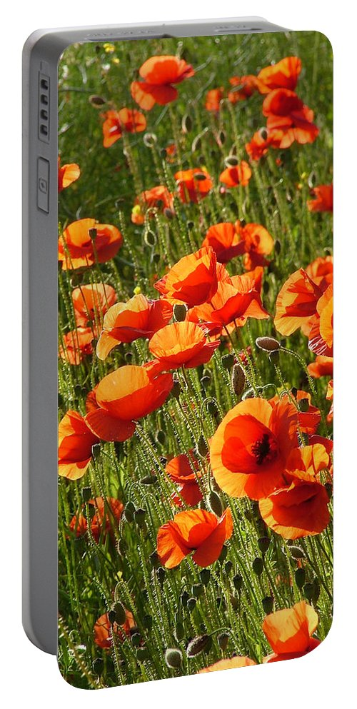 Poppies Portable Battery Charger featuring the photograph Poppies by Bob Kemp