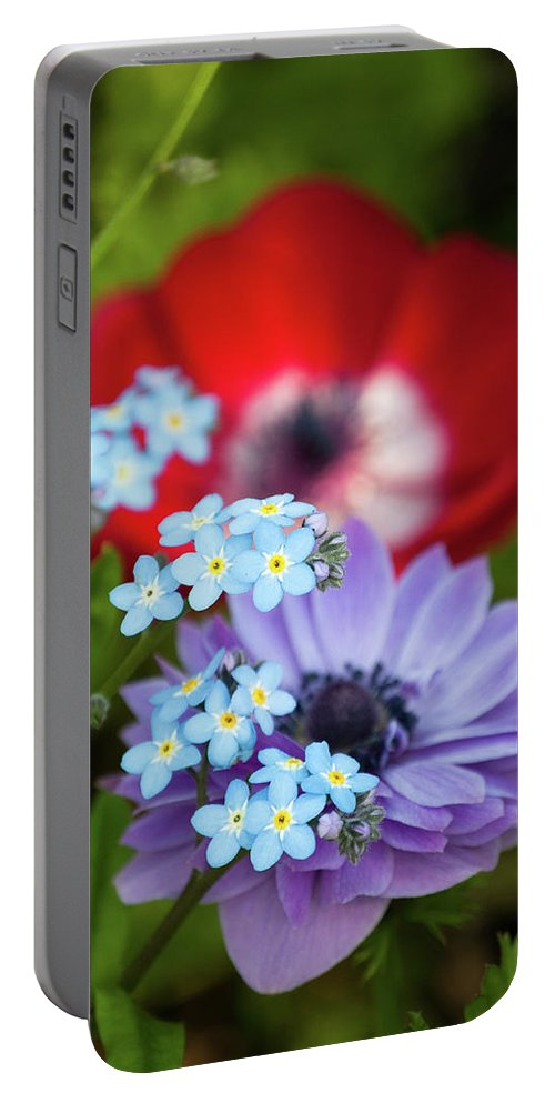 Red Portable Battery Charger featuring the photograph Poppy And Friends by Trish Tritz