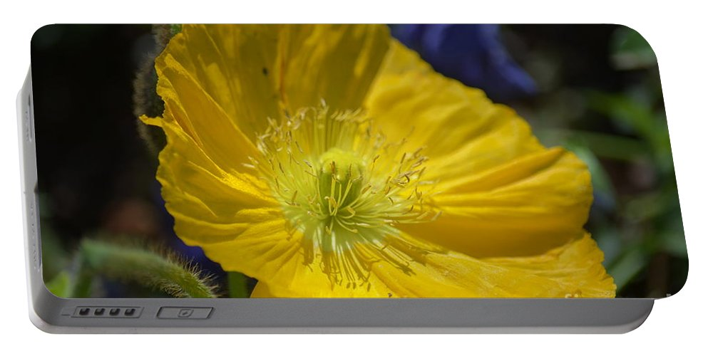 Poppy Flair Portable Battery Charger featuring the photograph Poppy Flair by Maria Urso