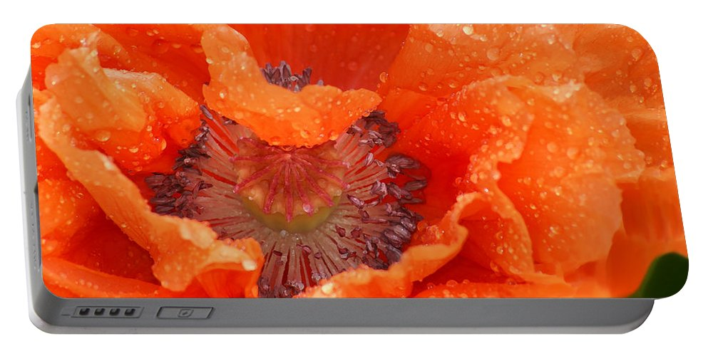 Orange Portable Battery Charger featuring the photograph Poppy by Heather Coen