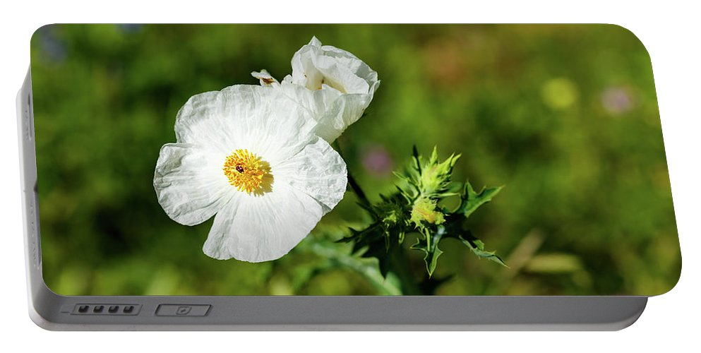 Austin Portable Battery Charger featuring the photograph Poppy Wildflower by Raul Rodriguez