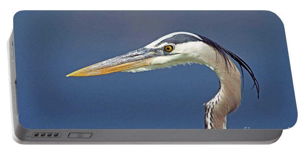 Bird Portable Battery Charger featuring the photograph Portrait Of A Great Blue Heron by John Harmon