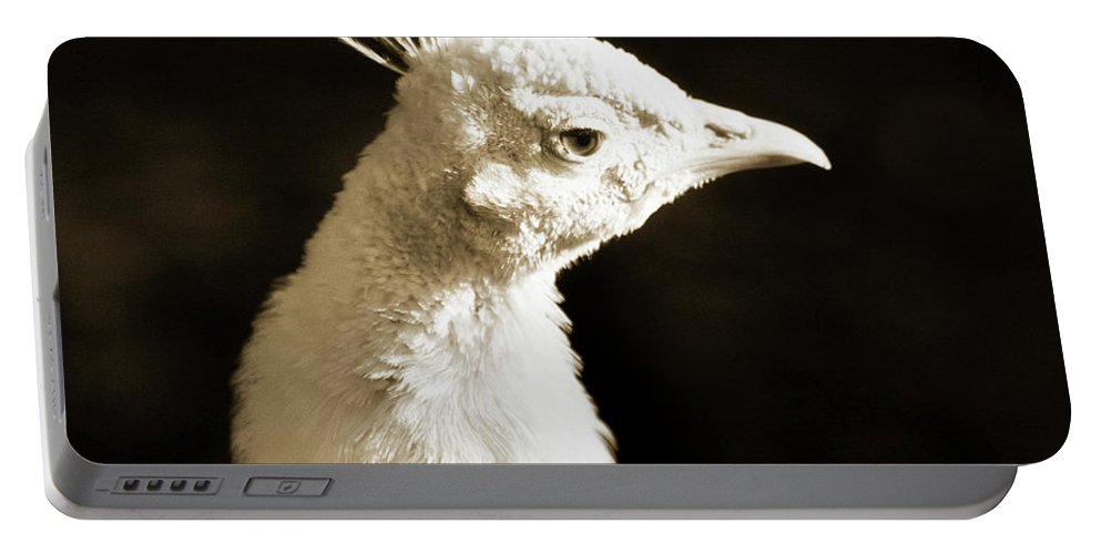White Portable Battery Charger featuring the photograph Portrait Of A White Peacock by Bronze Riser
