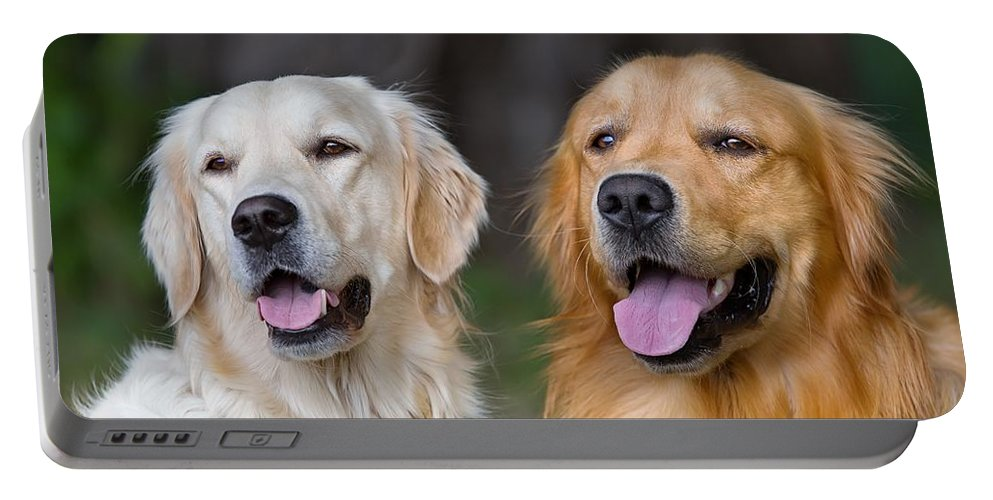 Portable Battery Charger featuring the drawing Portrait Of Two Young Beauty Dogs by Li Mei