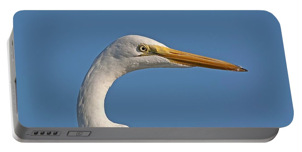 Wildlife Portable Battery Charger featuring the photograph Posing Heron by Kenneth Albin