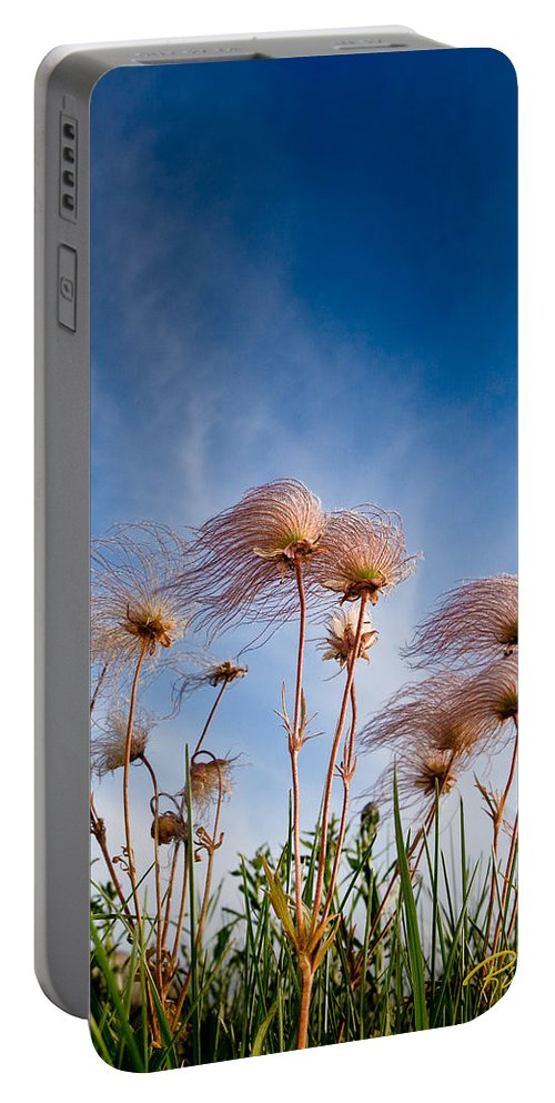 Eagle Rock Portable Battery Charger featuring the photograph Prairie Smoke by Rikk Flohr
