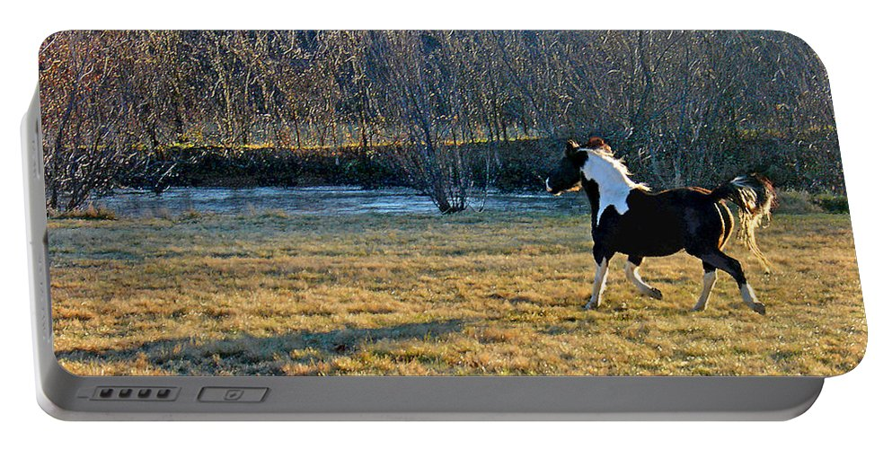 Horse Portable Battery Charger featuring the photograph Prance by Steve Karol