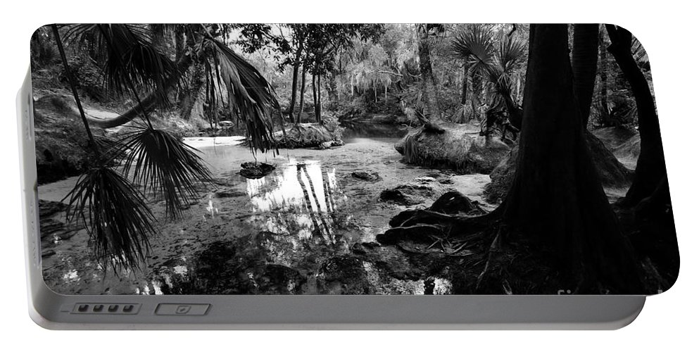 Florida Portable Battery Charger featuring the photograph Precolumbian Florida by David Lee Thompson