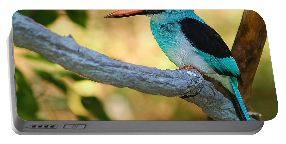 Kingfisher Portable Battery Charger featuring the photograph Pretty Bird by Gaby Swanson