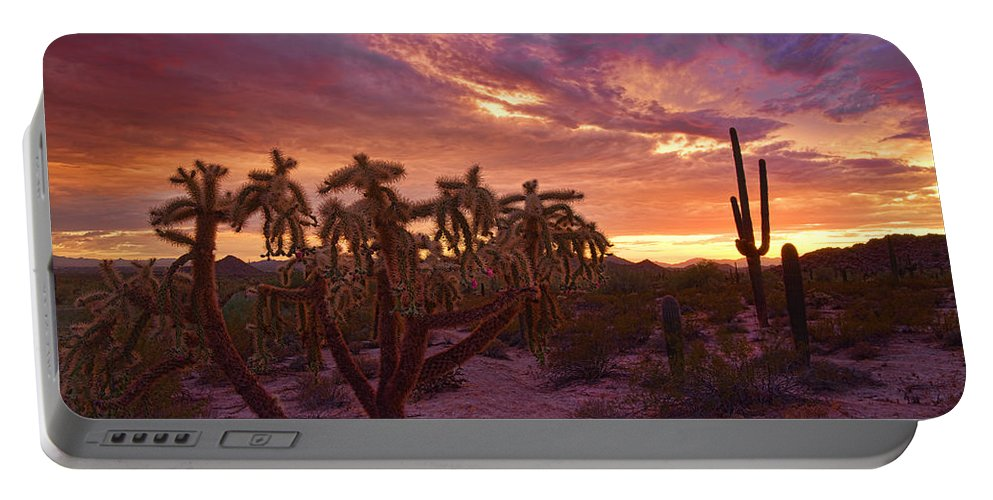 Saguaro Sunset Portable Battery Charger featuring the photograph Pretty In Pink Desert Skies by Saija Lehtonen