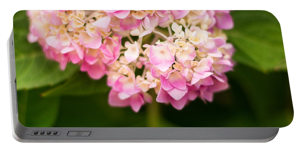 Hydrangea Portable Battery Charger featuring the photograph Pretty In Pink by Parker Cunningham