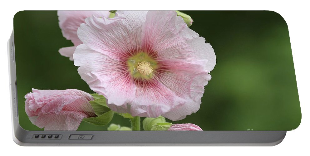 Flower Portable Battery Charger featuring the photograph Pretty In Pink by Teresa Zieba