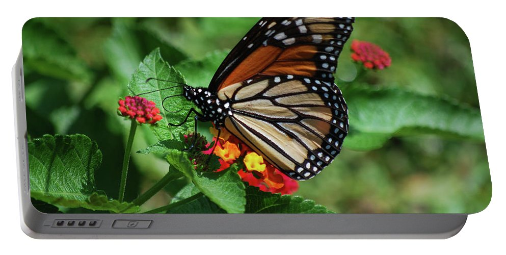 Monarch Portable Battery Charger featuring the photograph Pretty Spots by Lori Tambakis