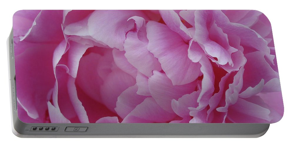 Flower Portable Battery Charger featuring the photograph Proud Peony by Cheryl O'Neil