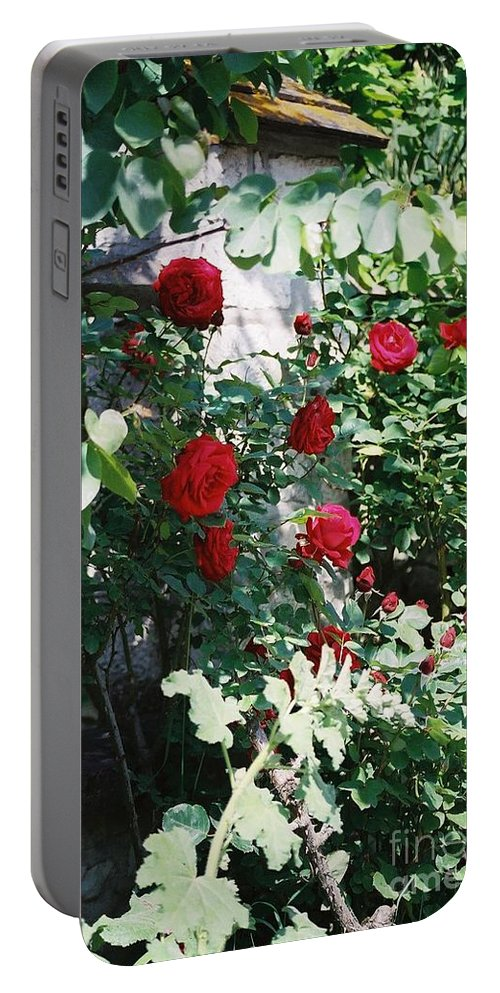Floral Portable Battery Charger featuring the photograph Provence Red Roses by Nadine Rippelmeyer