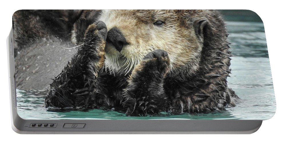 Alaska Portable Battery Charger featuring the photograph Psst by Kathy Ax