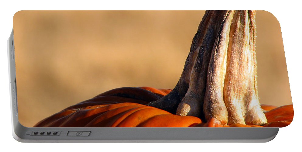 Pumpkins Portable Battery Charger featuring the photograph Pumpkin by Amanda Barcon