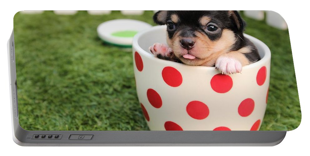 Portable Battery Charger featuring the photograph Puppy Cup by Siobhan May