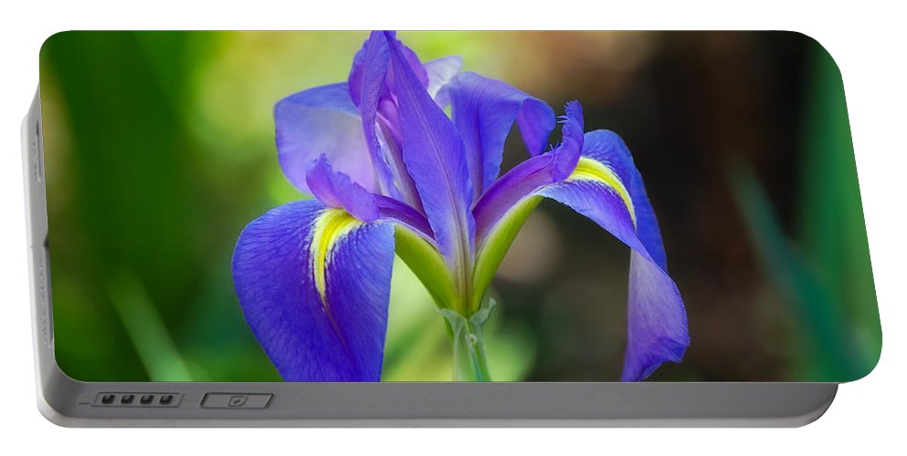 Iris Portable Battery Charger featuring the photograph Pure Simple Beautiful by Rich Leighton