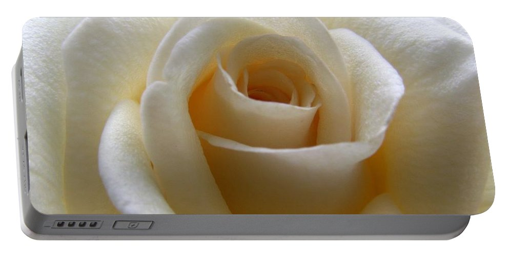Rose Portable Battery Charger featuring the photograph Purity by Amy Fose