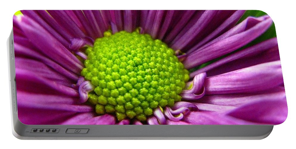 Flower Portable Battery Charger featuring the photograph Purple And Green by Rhonda Barrett