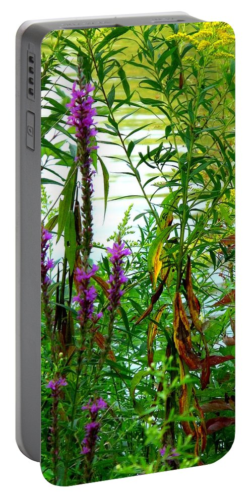 Purple Portable Battery Charger featuring the photograph Purple And Yellow by Ian MacDonald