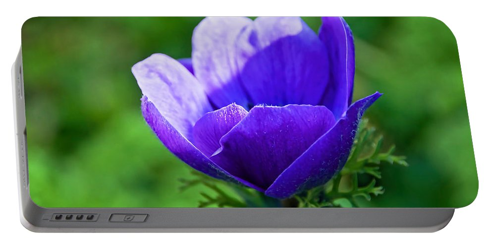 Purple Portable Battery Charger featuring the photograph Purple Anemone by Susie Peek