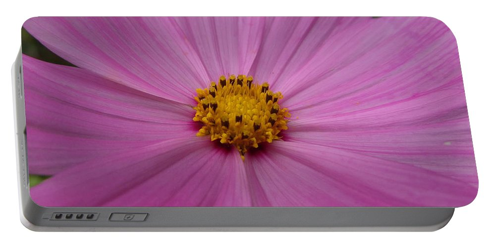 Macro Portable Battery Charger featuring the photograph Purple Beauty by Alexis Ketner