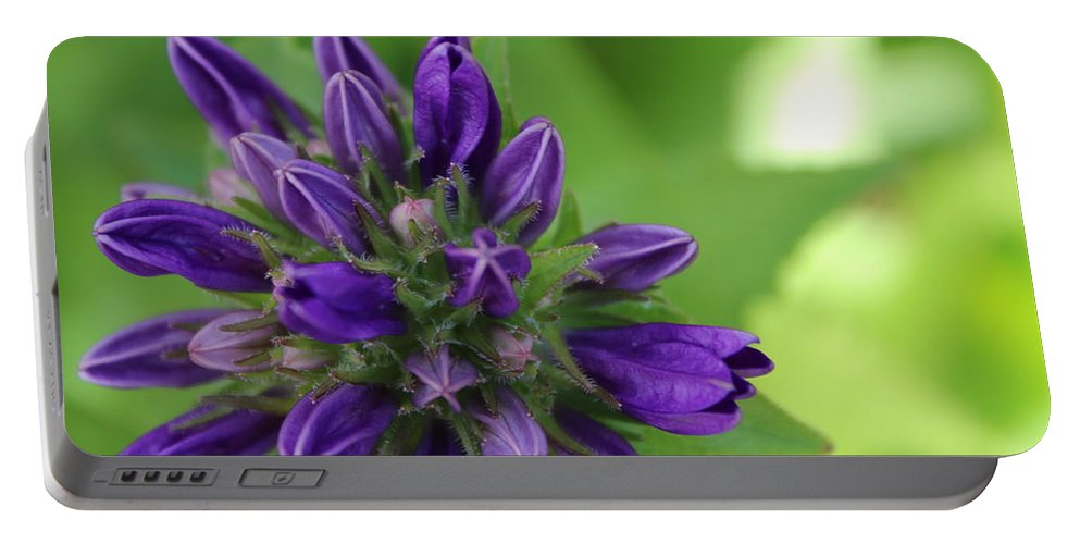 Purple Portable Battery Charger featuring the photograph Purple Bells 2 by Alexis Ketner