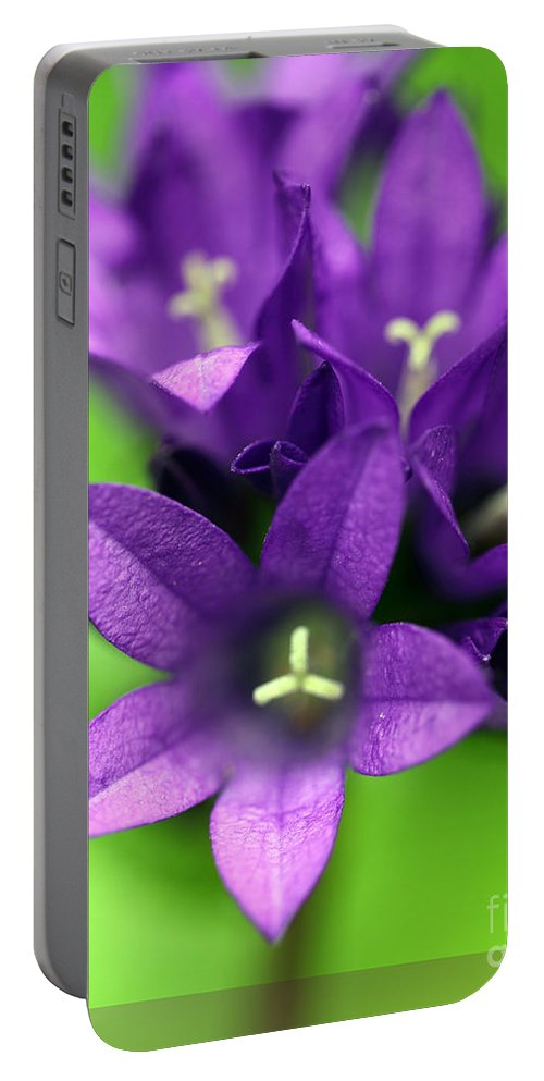 Floral Portable Battery Charger featuring the photograph Purple Blooms by Amanda Barcon