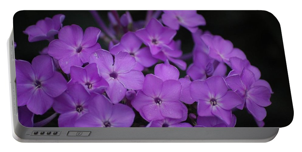 Digital Photo Portable Battery Charger featuring the photograph Purple Blossoms by David Lane