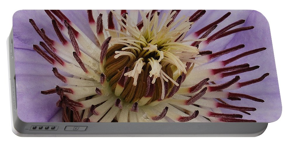Clematis Portable Battery Charger featuring the photograph Purple Clematis by Michael Peychich