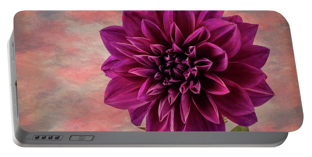 Dahlias Portable Battery Charger featuring the photograph Purple Dhalia by Garry Gay